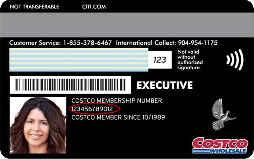 Costco Anywhere® Visa Card by Citi Example