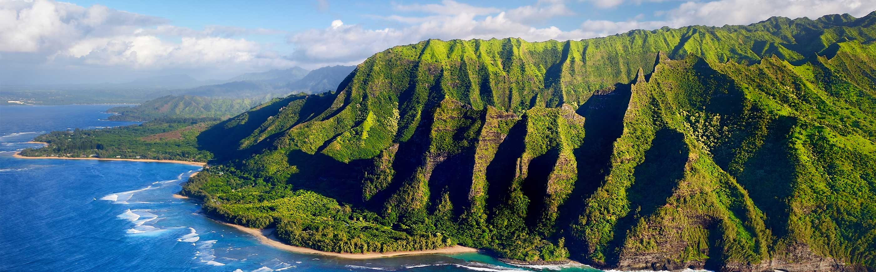 Hawaii and South Pacific Cruises