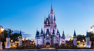 Walt Disney World® Resort On-Site Collection