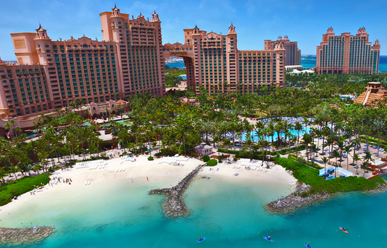 The Royal at Atlantis image