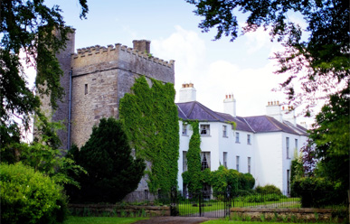 Barberstown Castle image
